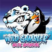Logo Arctic Adventure