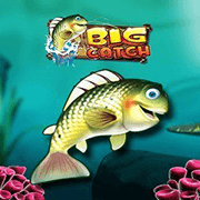 Logo Big Catch